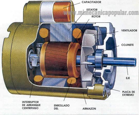 Partes de que se componen los motores tifasicos y for J and s motors