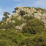 Le maquis au-dessus de Vetaro (Viggianello, près de Propriano), Corse du Sud, 11 août 2006. Photo : J.-M. Gayman
