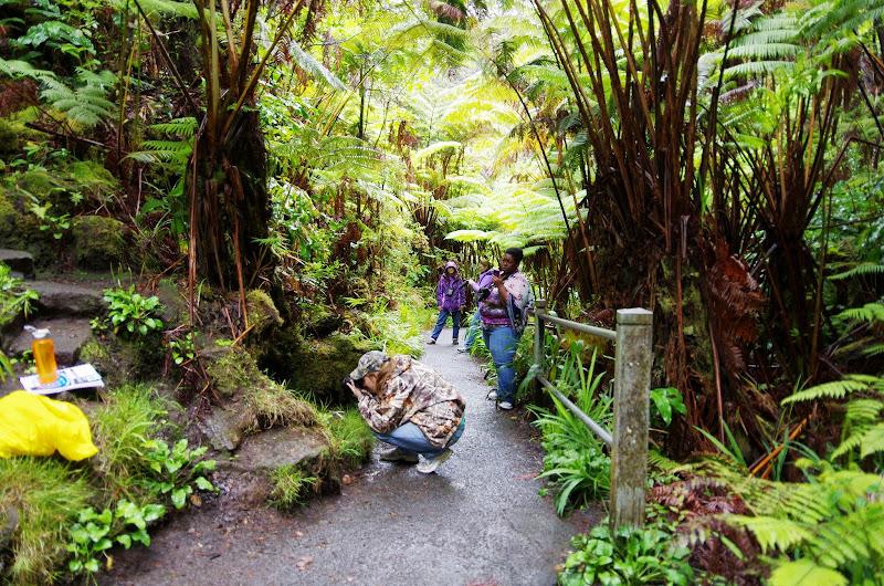 06-22-13 Hawaii Volcanoes National Park, Mauna Kea - IMGP8435.JPG