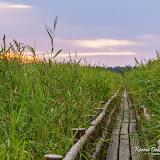 Мостки на озере Каниеру