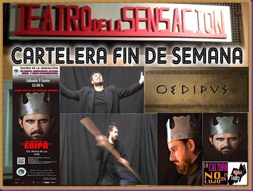 FIN DE SEMANA EDIPO BICHOS