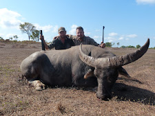 Mr Paller from Hungary with an old buffalo bull.