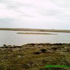 Æðarvatnshólmi.JPG