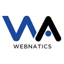 Webnatics - A Google AdWords Premier SME Partner logo