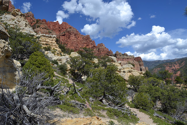 yellow and red rocks
