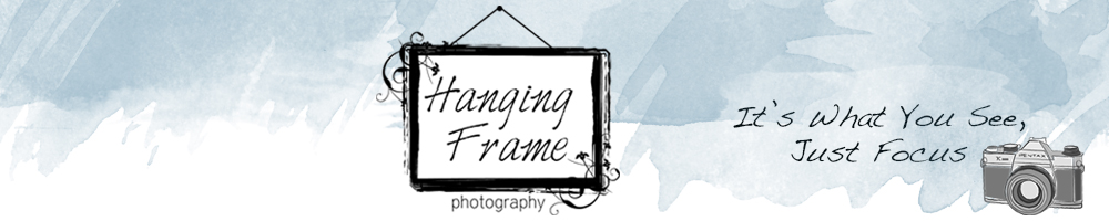 Hanging Frame Photography