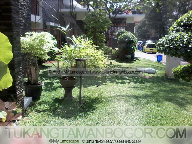 Tukang Taman Jakarta Murah - Contoh Taman Rumput Minimalis Di Samping Rumah
