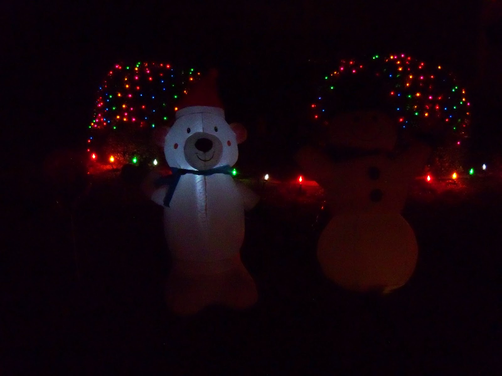 Christmastime - 116_6214.JPG
