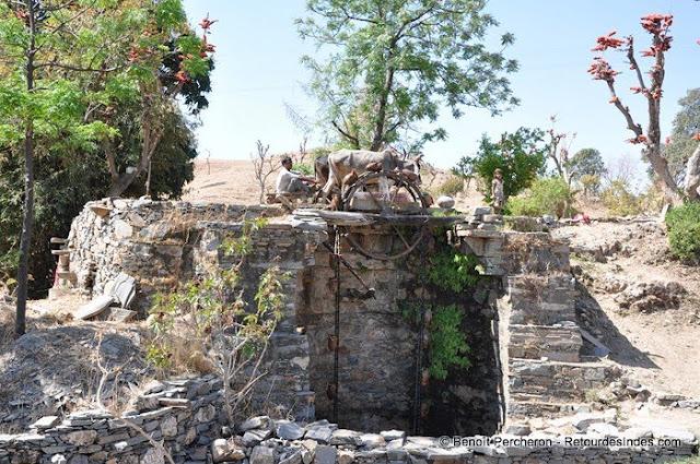 Moulin à eau, entre Ranakpur et Narlai, Rajasthan