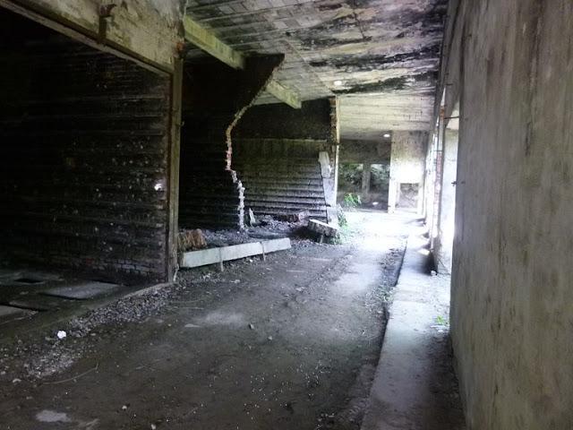Obóz Ustrzyki 2015 - P1130906_1.JPG