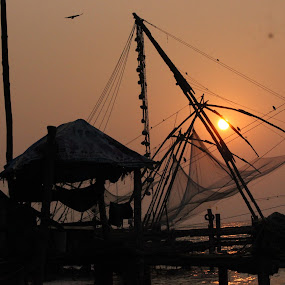 End of a Day by Manoj Abraham - Nature Up Close Other Natural Objects ( the setting sun )