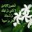 Messikh Yasmine's profile photo