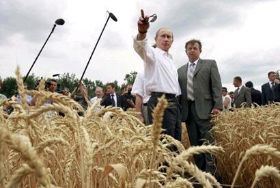 WeizenRussland
