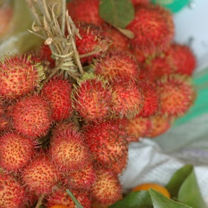 rambutan fruit on a vine