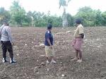 Mendukung PEN Program 100 Hari Kerja Kapolri Listyo Sigit Prabowo, Polsek Wewiku Eksekusikan Lahan di Desa Biris