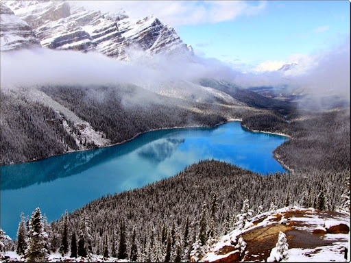 Peyto Lake, Alberta, Canada.jpg