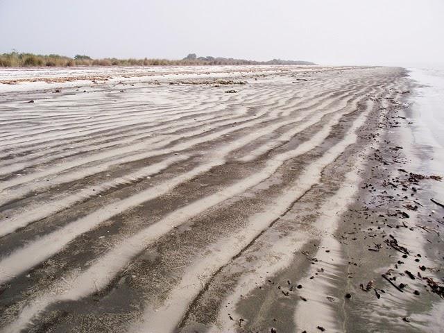 Jamtola Beach inside Sundarbans - the nicest, cleanest, and quietest sandy beach in Bangladesh