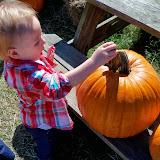Pumpkin Patch - 115_8227.JPG