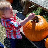 Pumpkin Patch - 115_8227.JPG