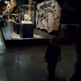 Houston Museum of Natural Science, Sugar Land - 114_6697.JPG