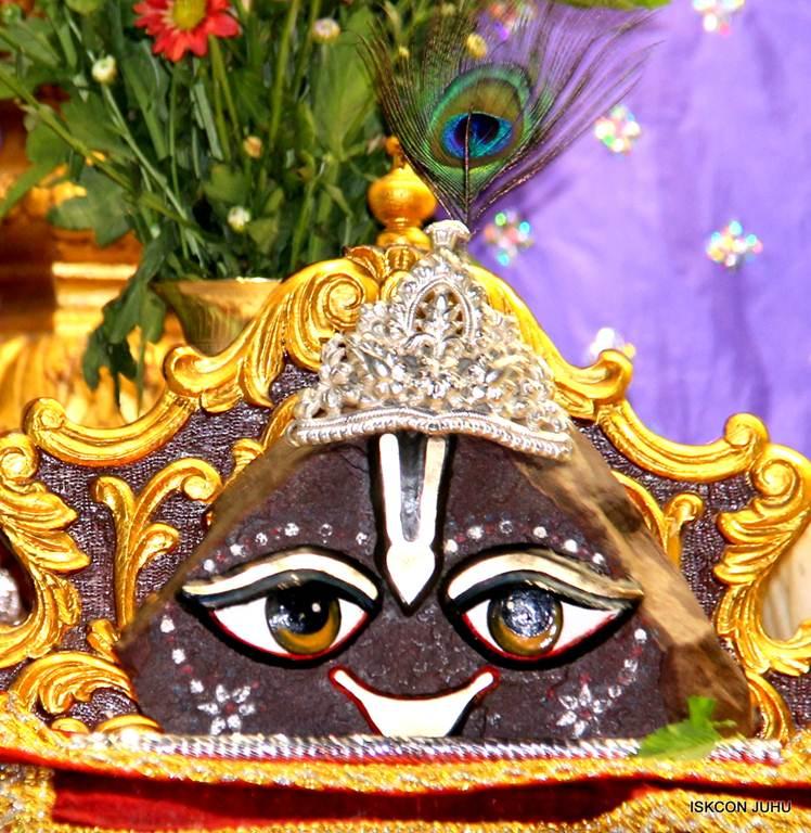 ISKCON Juhu Mangla Deity Darshan 17 Dec 2015 (17)