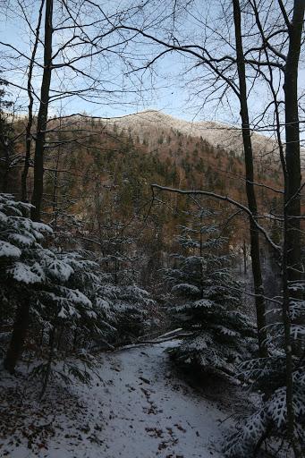 Suchý vrch sponad Šútovského vodopádu