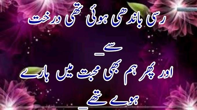 rasi bandhi hui ti darakth sy sad poetry