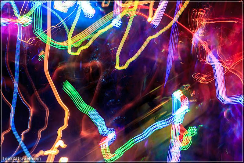 Светокисть (foto il  фото светокисть видео  20120502 eilat camel farm 029 6078)