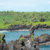 Hawaii Day 5 - 114_1516.JPG