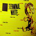 Terminal White - The Color-Line