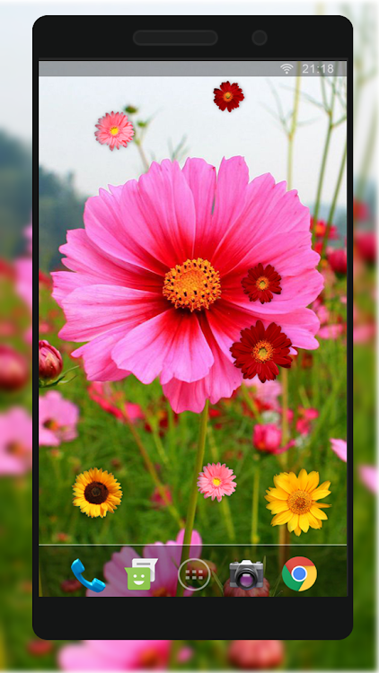 Nice Flower Live Wallpaper Hd Android Aplicaciones Appagg
