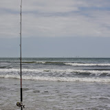 02-07-15 Corpus Christi & South Padre Island - _IMG0460.JPG