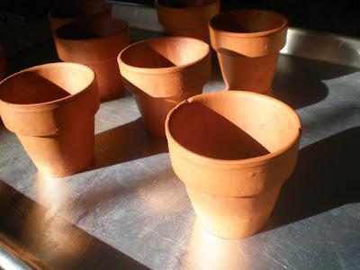 baking with mini terra cotta pots