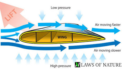 Hydrodynamics : fluid at motion , study notes for IIT JEE | concept booster, chapter highlights |