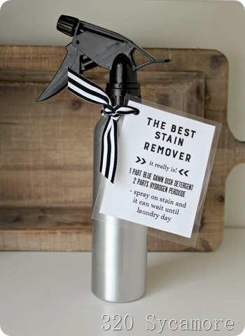 best stain remover gift idea