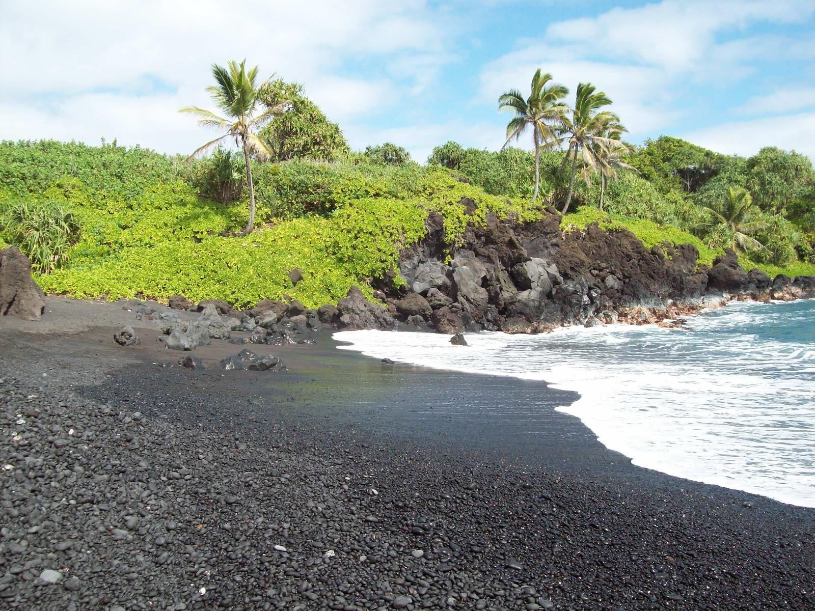 Hawaii Day 5 - 114_1578.JPG