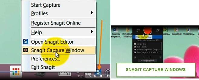 snagit-capture-windows
