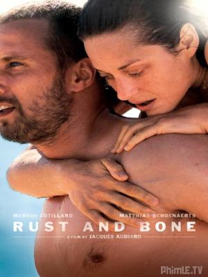 Phim Gỉ Và Xương - Rust And Bone (2012)