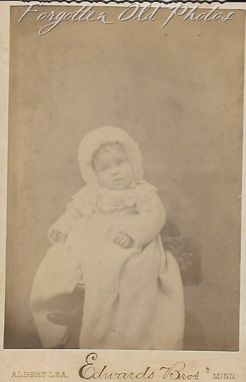 Cabinet Card cute baby Walker ant