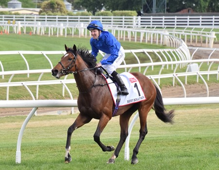 caulfield cup_best solution 7