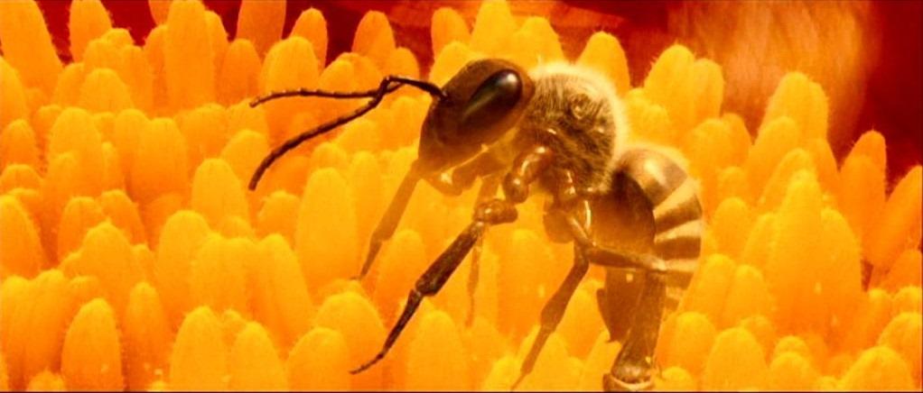 [abeille%5B4%5D]