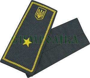 Погони / митна служба/  інспектор 4 рангу / сірі