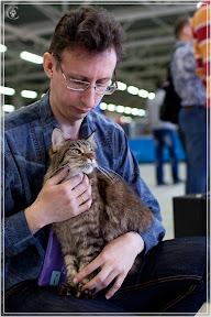 cats-show-24-03-2012-fife-spb-www.coonplanet.ru-018.jpg