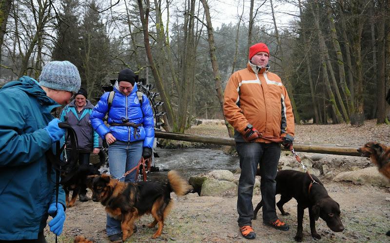 20140101 Neujahrsspaziergang im Waldnaabtal - DSC_9882.JPG