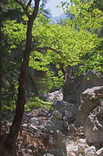 Gorges de Samaria (Φαράγγι Σαμαριάς).