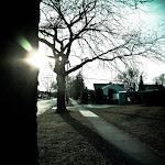 spring walk (1 of 11).jpg