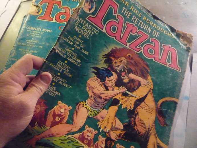 Joe Kubert's Tarzan