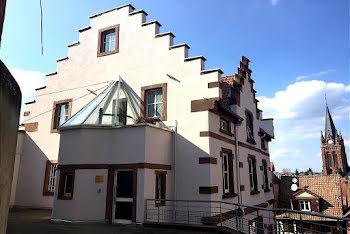 appartement à Pfaffenhoffen (67)