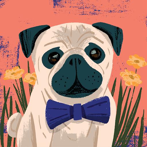 user M Wright apkdeer profile image