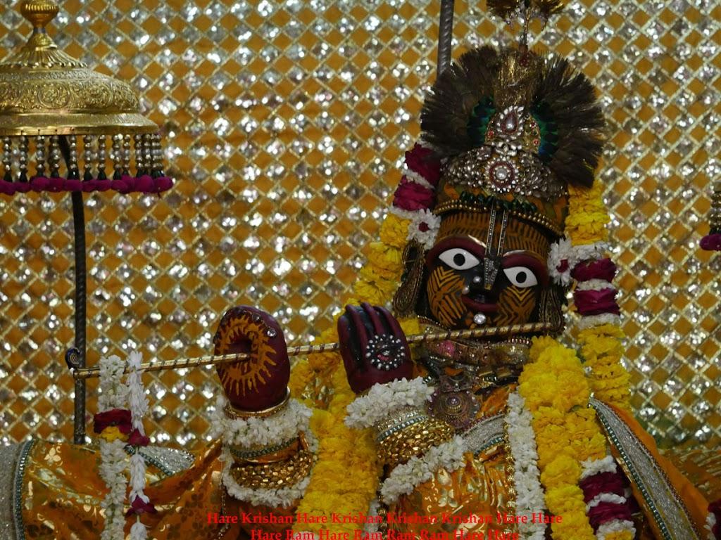 Radha Govind Devji Deity Darshan 28 Mar 2016 (8)